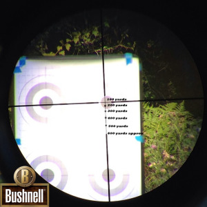 ar223 reticle