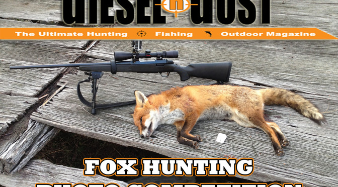 Fox Hunting Photo Competition